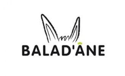 Balad'ane